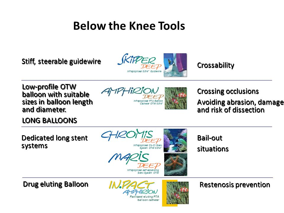 "Below the Knee Tools Stiff, steerable guidewire Infrapopliteal PTA Balloon Catheter OTW 0.014"" Infrapopliteal Co-Cr Stent System OTW 0.014"" Infrapopli"