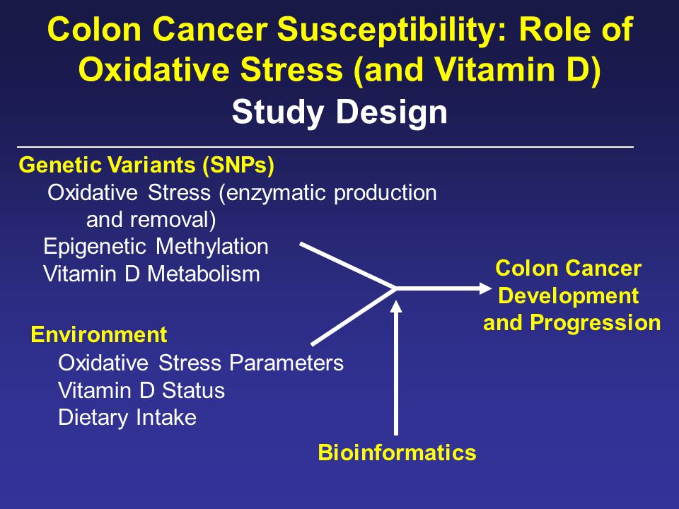 Study Design Genetic Variants (SNPs) Oxidative Stress (enzymatic production and removal) Epigenetic Methylation Vitamin D Metabolism Colon Cancer Development and Progression Colon Cancer Susceptibility: Role of Oxidative Stress (and Vitamin D) Oxidative Stress Parameters Vitamin D Status Dietary Intake Environment Bioinformatics