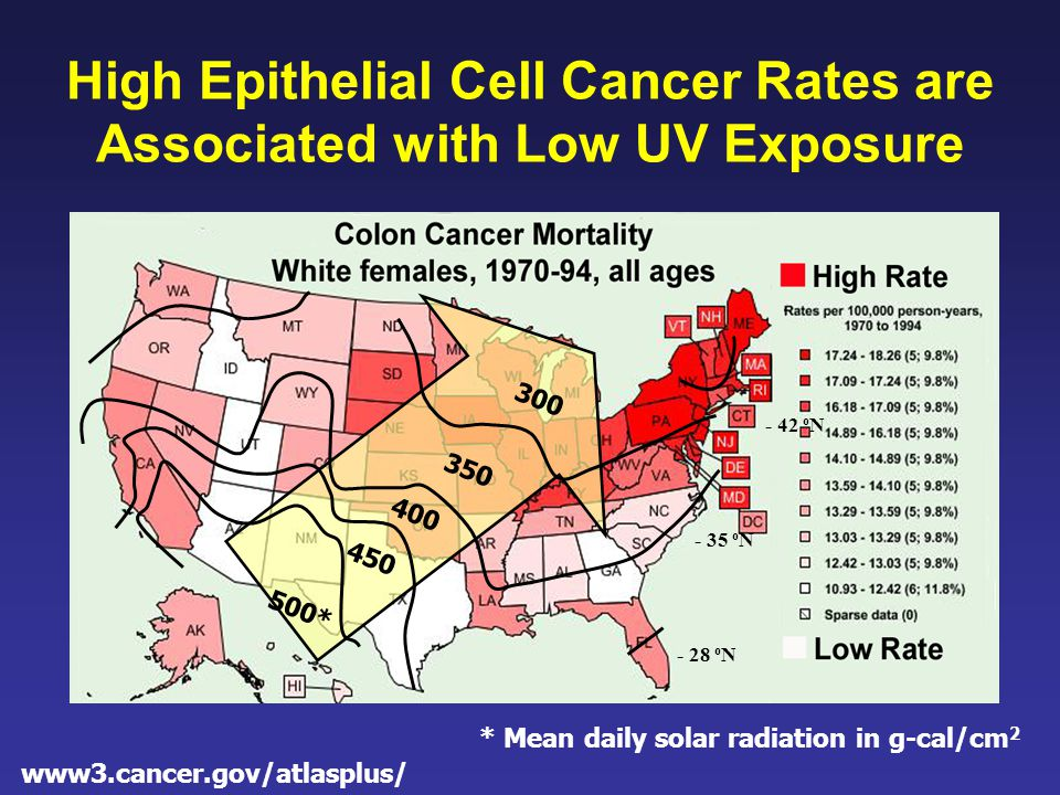 www3.cancer.gov/atlasplus/ High Epithelial Cell Cancer Rates are Associated with Low UV Exposure - 28 o N - 35 o N - 42 o N 500* 450 400 350 300 * Mean daily solar radiation in g-cal/cm 2