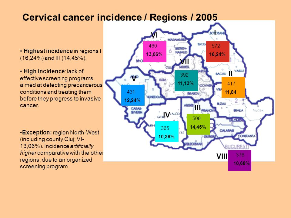 572 16,24% 417 11,84 460 13,06% 392 11,13% 431 12,24% 365 10,36% 509 14,45% 376 10,68% Cervical cancer incidence / Regions / 2005 Highest incidence in regions I (16,24%) and III (14,45%).
