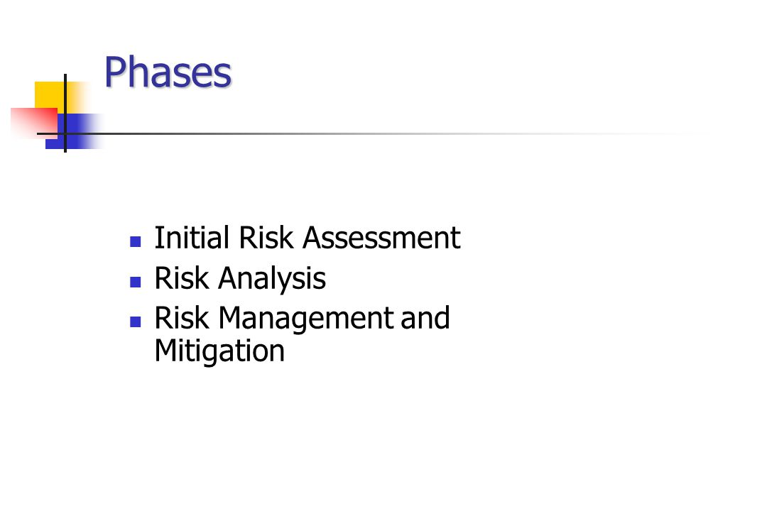 Phases Initial Risk Assessment Risk Analysis Risk Management and Mitigation