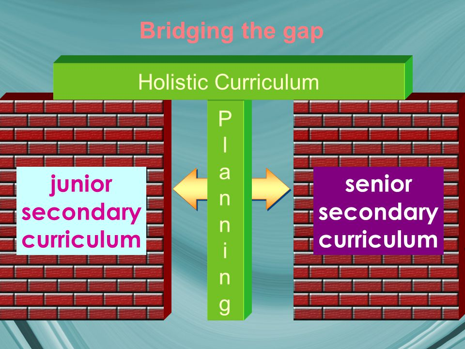 Bridging the gap junior secondary curriculum PlanningPlanning senior secondary curriculum Holistic Curriculum