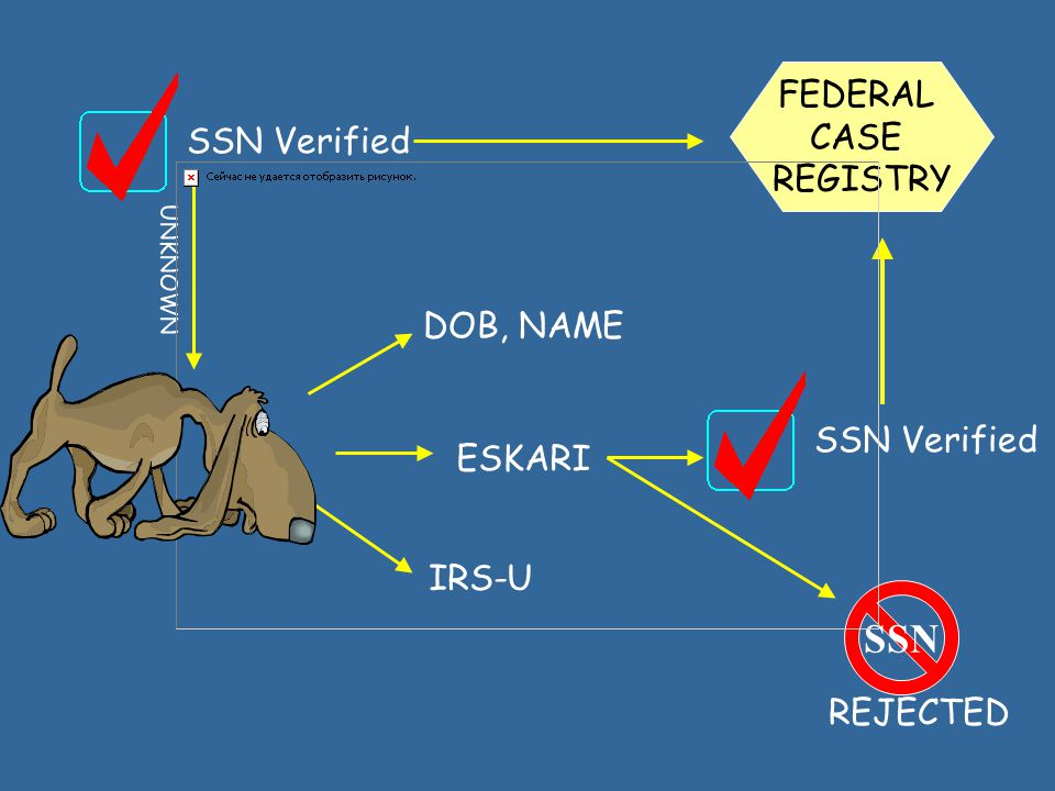 Social Security Numbers VerifiedMultipleCorrectedIdentifiedUnverifiedRejected