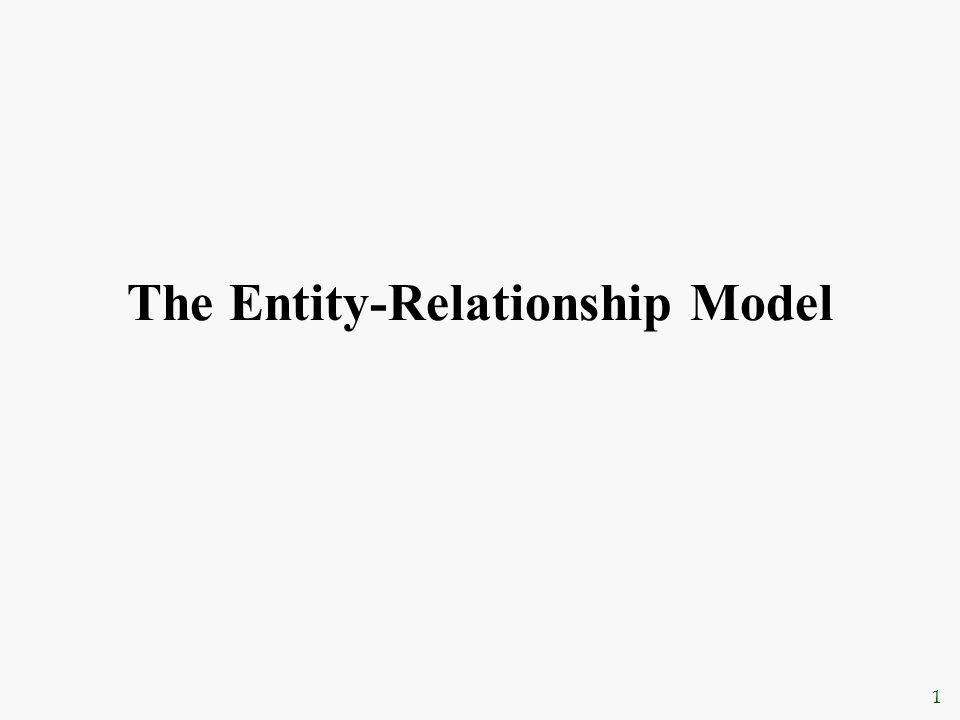 1 The Entity-Relationship Model