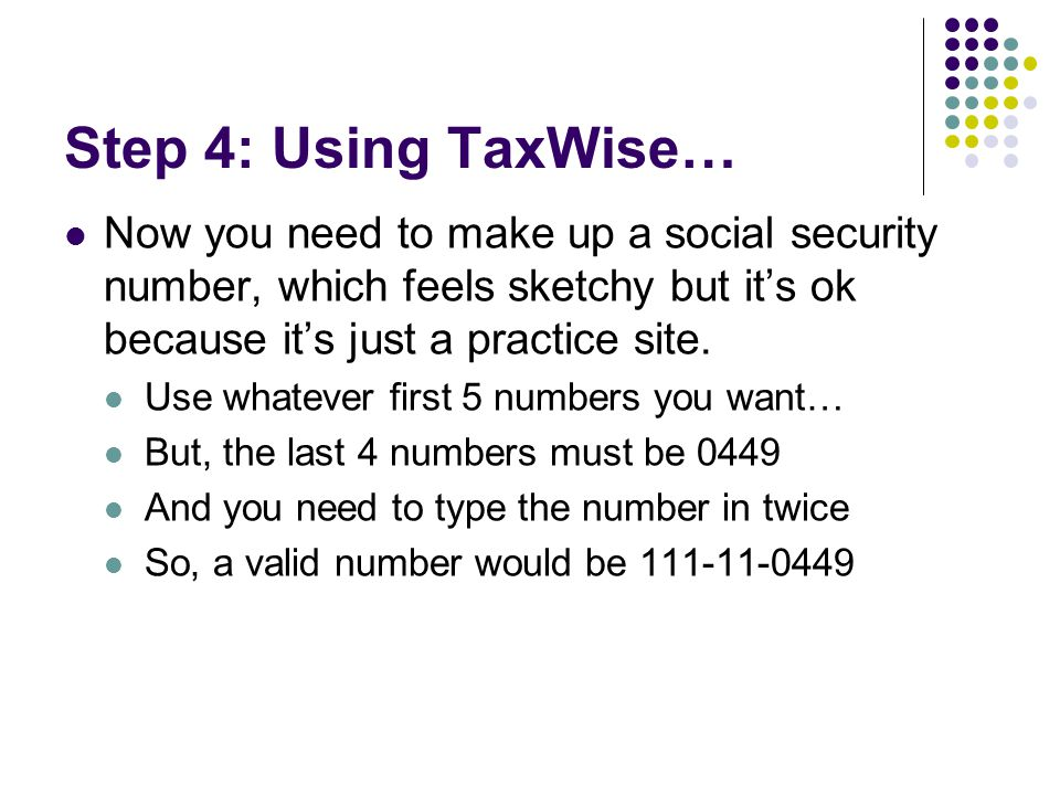 Step 4: Using TaxWise… Now you need to make up a social security number, which feels sketchy but it's ok because it's just a practice site. Use whatev