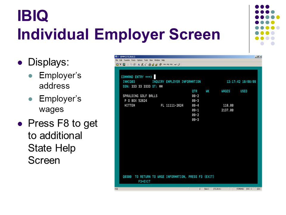 IBIQ Individual Employer Screen Displays: Employer's address Employer's wages Press F8 to get to additional State Help Screen