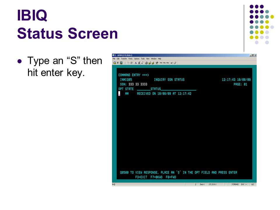 """IBIQ Status Screen Type an """"S"""" then hit enter key."""