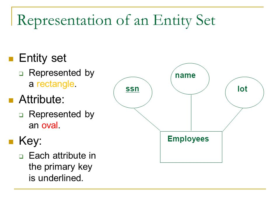 Representation of an Entity Set Entity set  Represented by a rectangle. Attribute:  Represented by an oval. Key:  Each attribute in the primary key