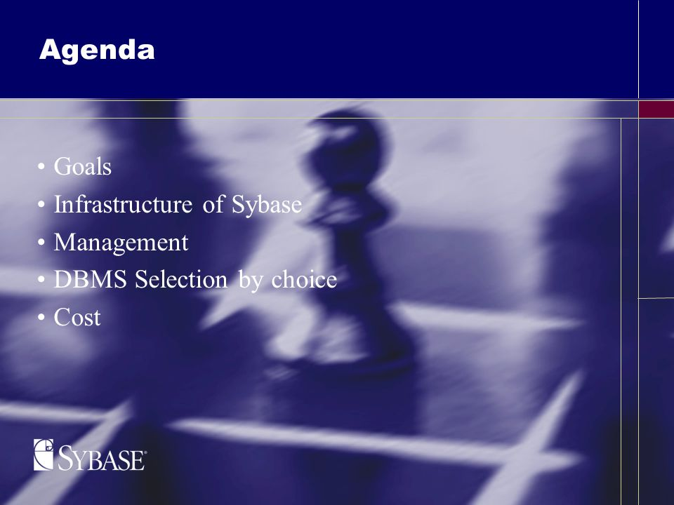 Agenda Goals Infrastructure of Sybase Management DBMS Selection by choice Cost