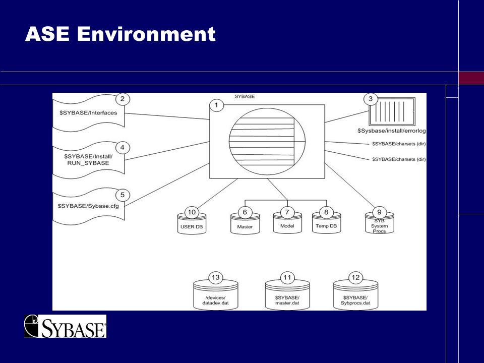 ASE Environment