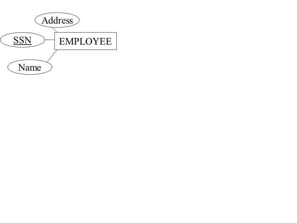 EMPLOYEE Address SSN Name