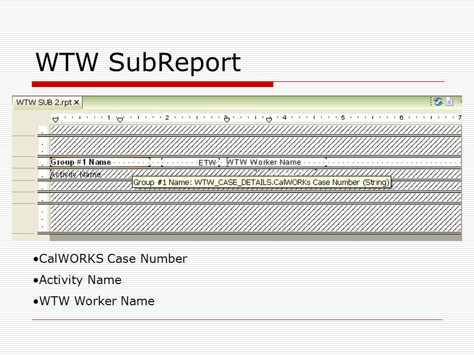 CalWORKS Case Number Activity Name WTW Worker Name