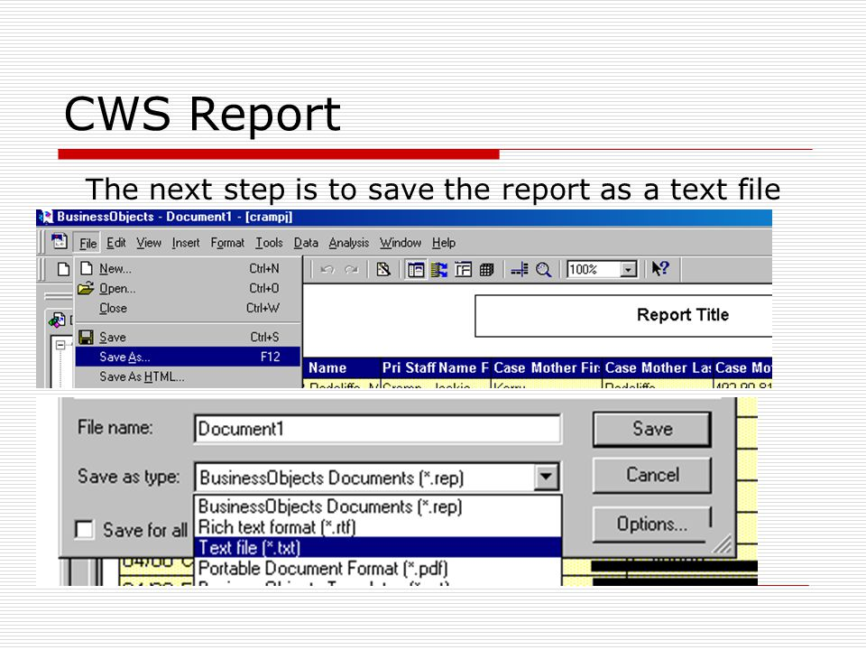 CWS Report The next step is to save the report as a text file