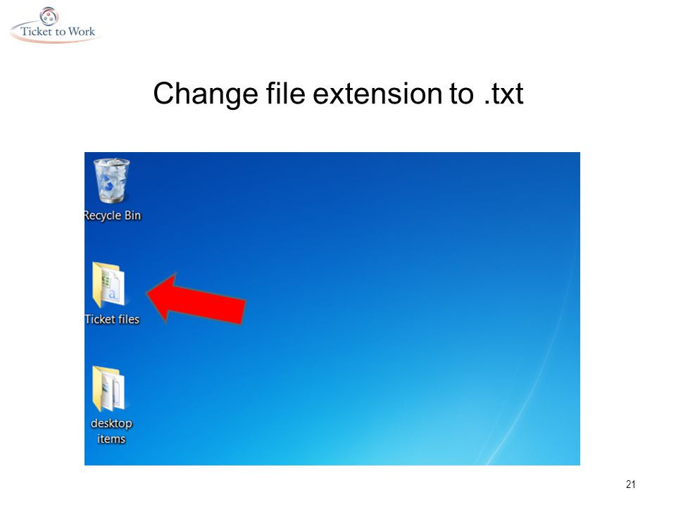 Change file extension to.txt 21