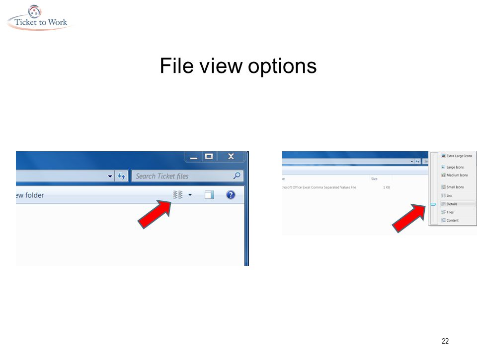 File view options 22