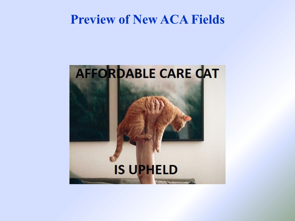 Preview of New ACA Fields