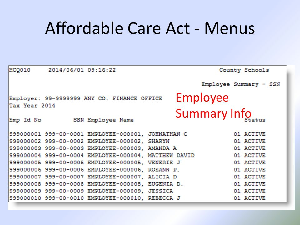 Affordable Care Act - Menus Employee Summary Info