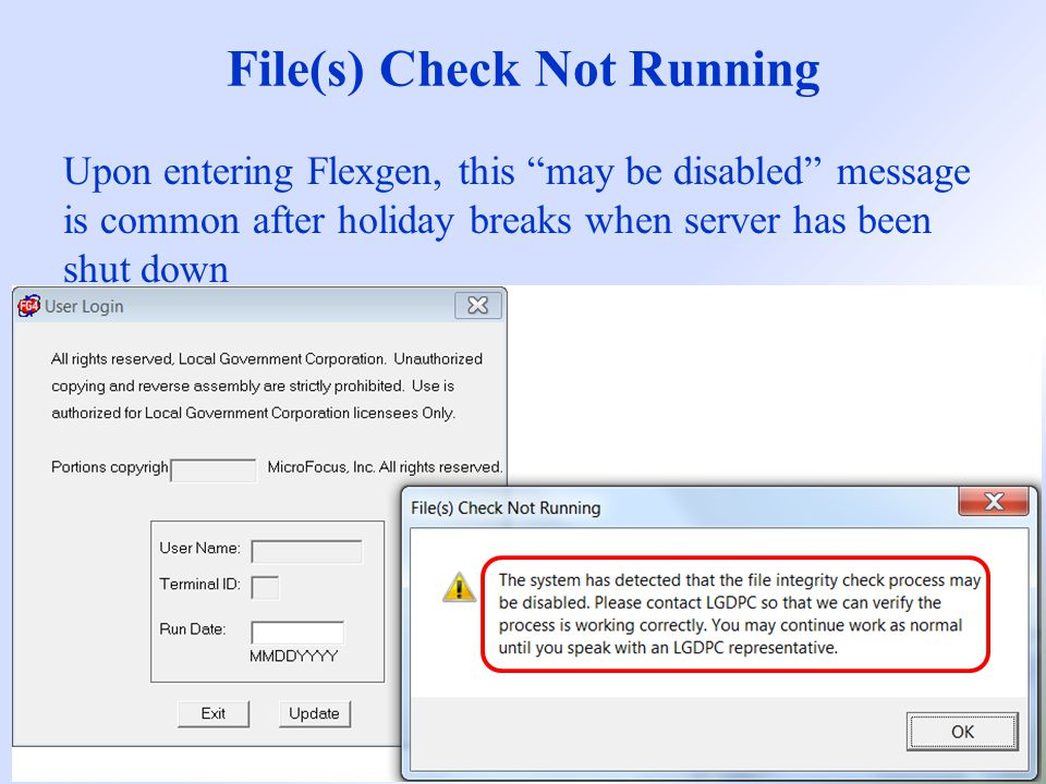 File(s) Check Not Running What is it.