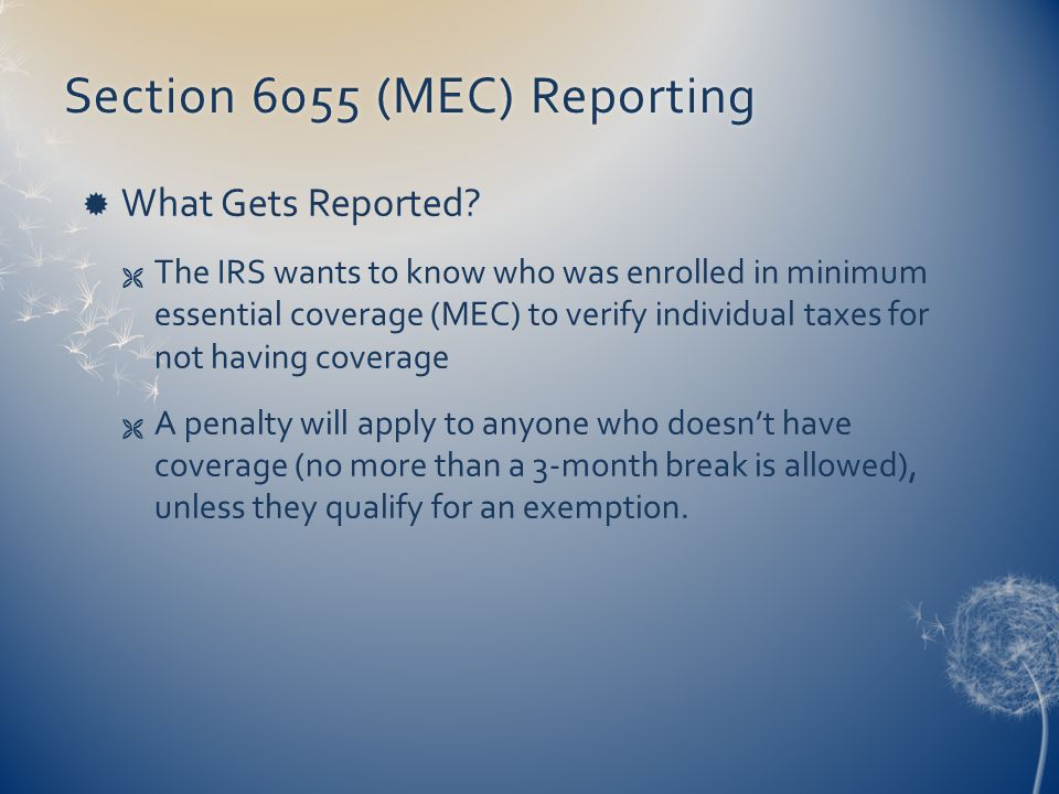 Section 6055 (MEC) ReportingSection 6055 (MEC) Reporting  What Gets Reported.