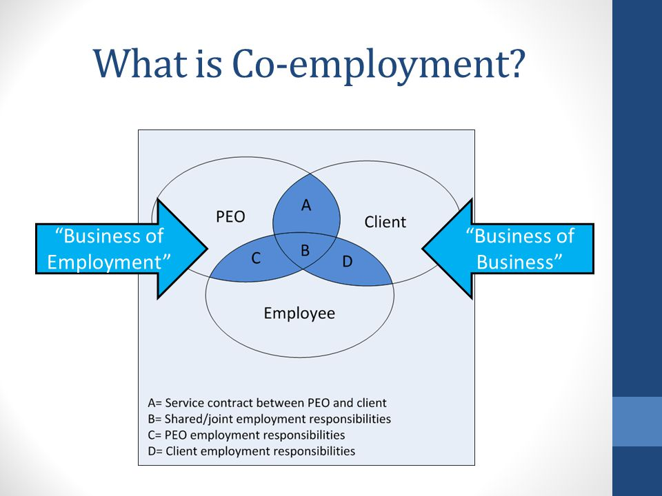 "What is Co-employment? ""Business of Employment"" ""Business of Business"""