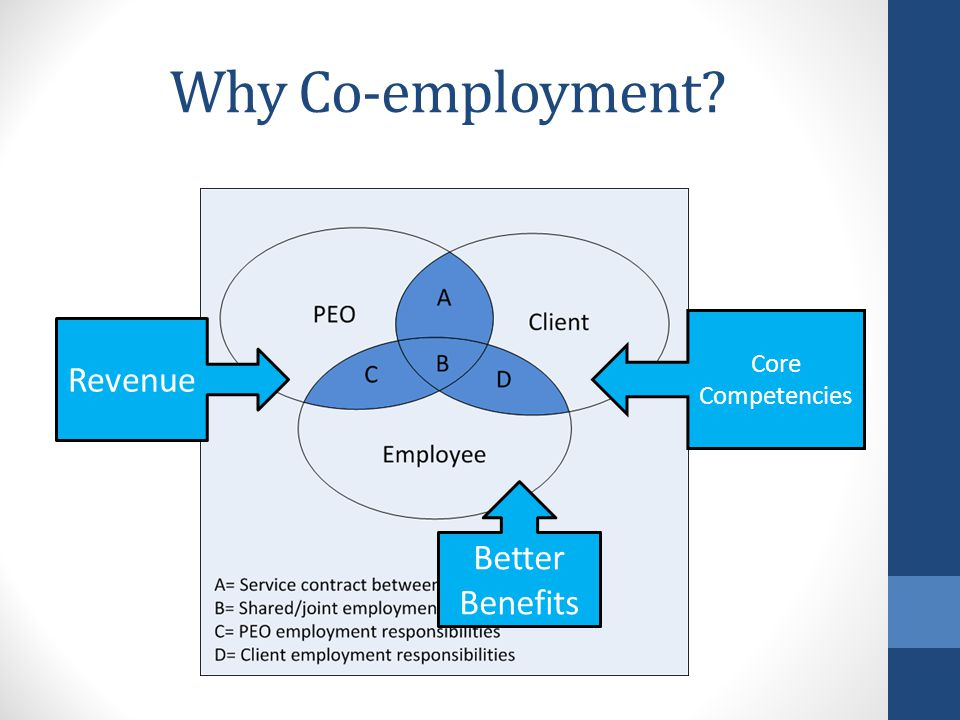 Why Co-employment Revenue Better Benefits Core Competencies