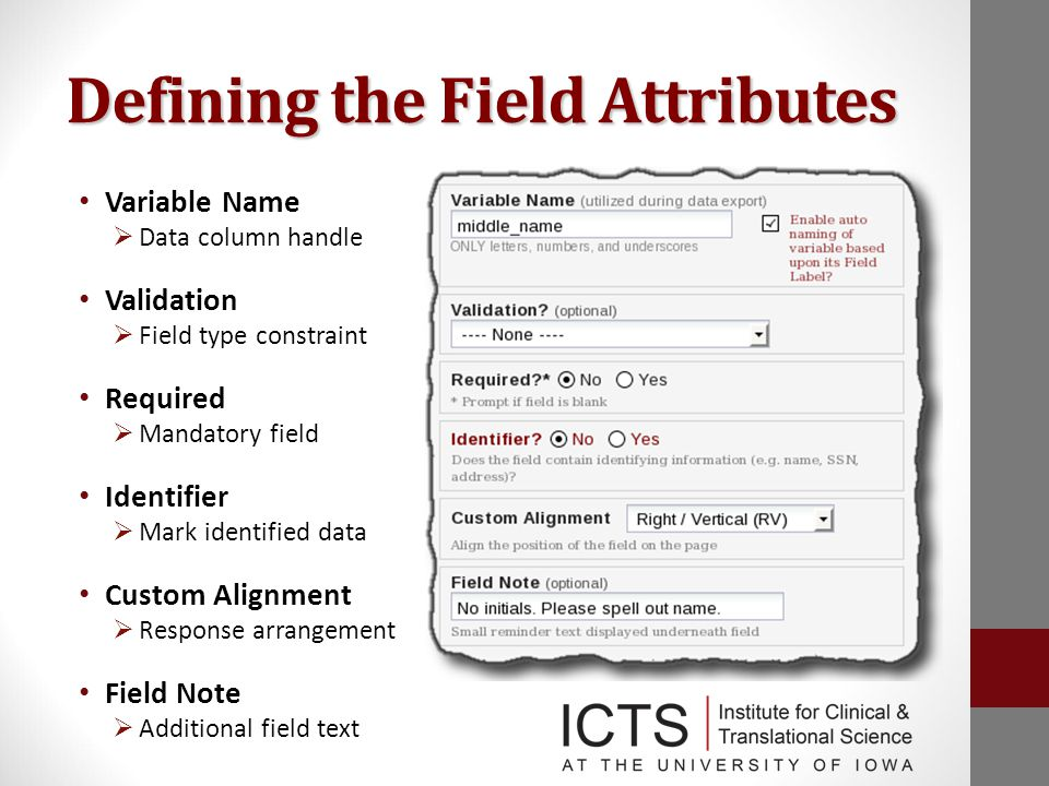 Defining the Field Attributes Variable Name  Data column handle Validation  Field type constraint Required  Mandatory field Identifier  Mark identified data Custom Alignment  Response arrangement Field Note  Additional field text