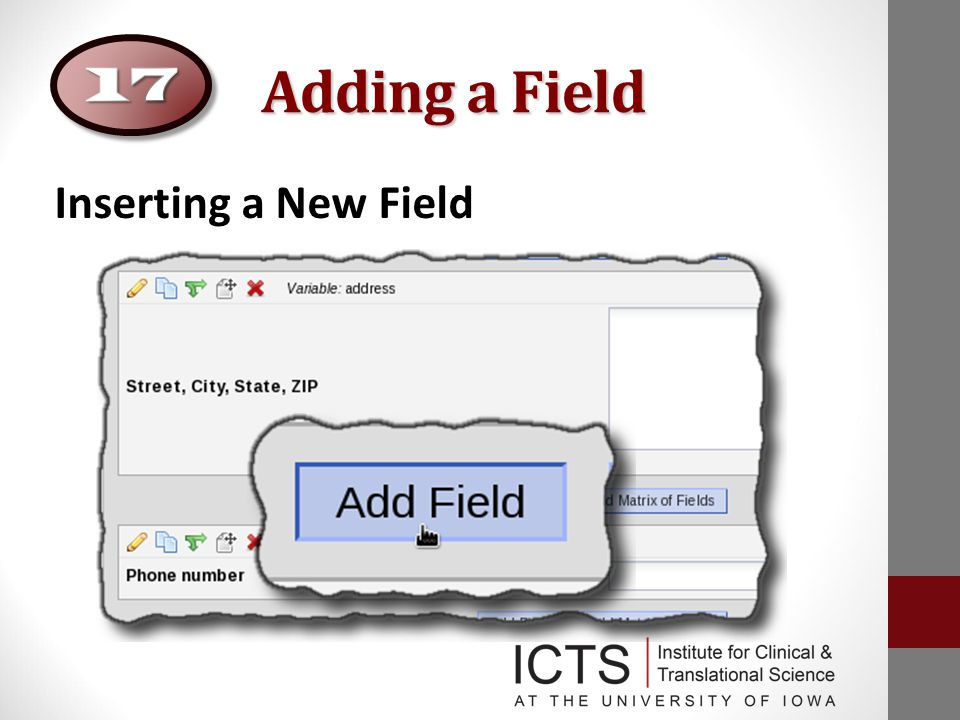 Adding a Field Inserting a New Field