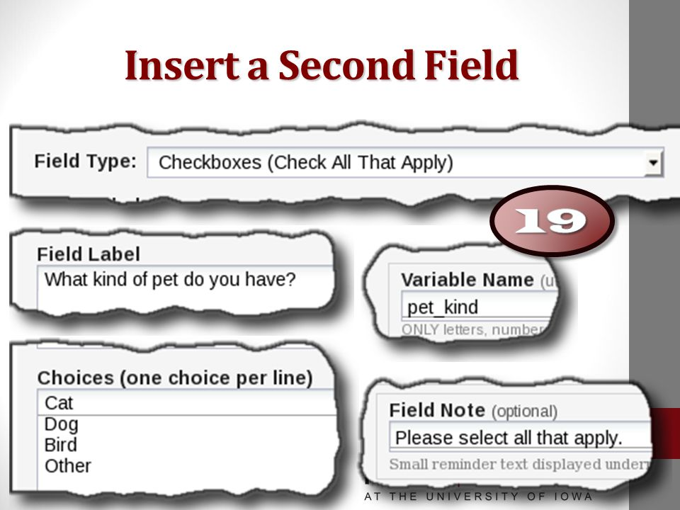 Insert a Second Field