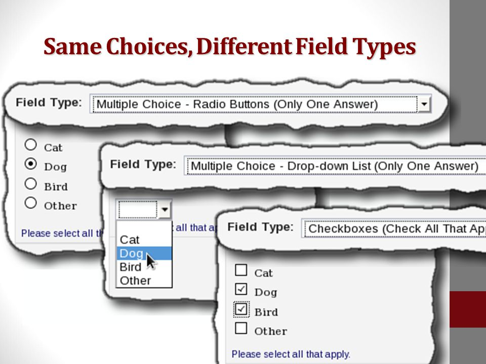 Changing the field type results in different form controls  Radio Buttons  Drop-down List  Checkboxes Same Choices, Different Field Types