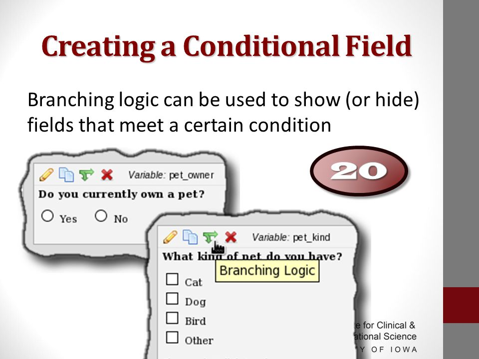 Creating a Conditional Field Branching logic can be used to show (or hide) fields that meet a certain condition