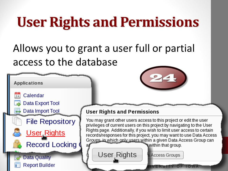 User Rights and Permissions Allows you to grant a user full or partial access to the database