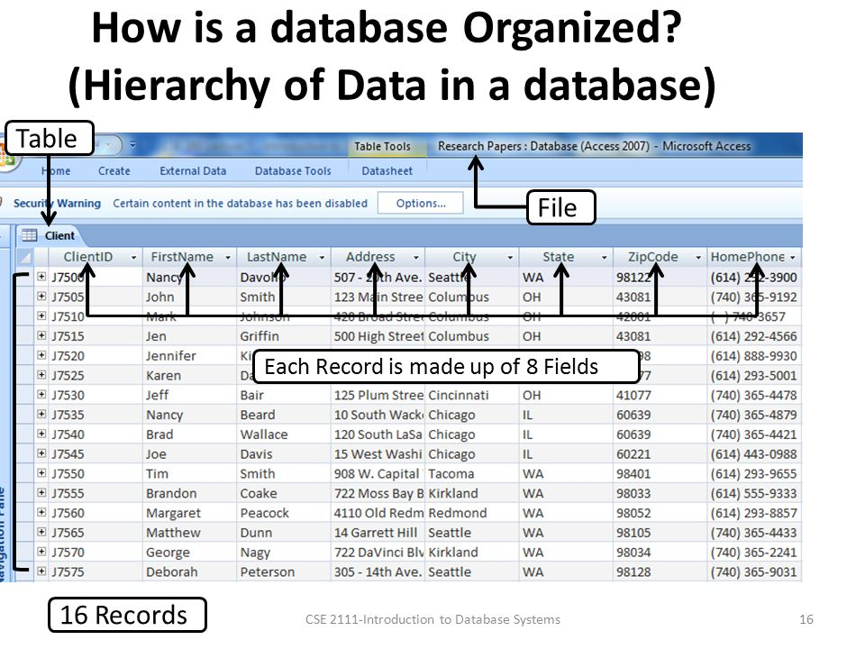 How is a database Organized.