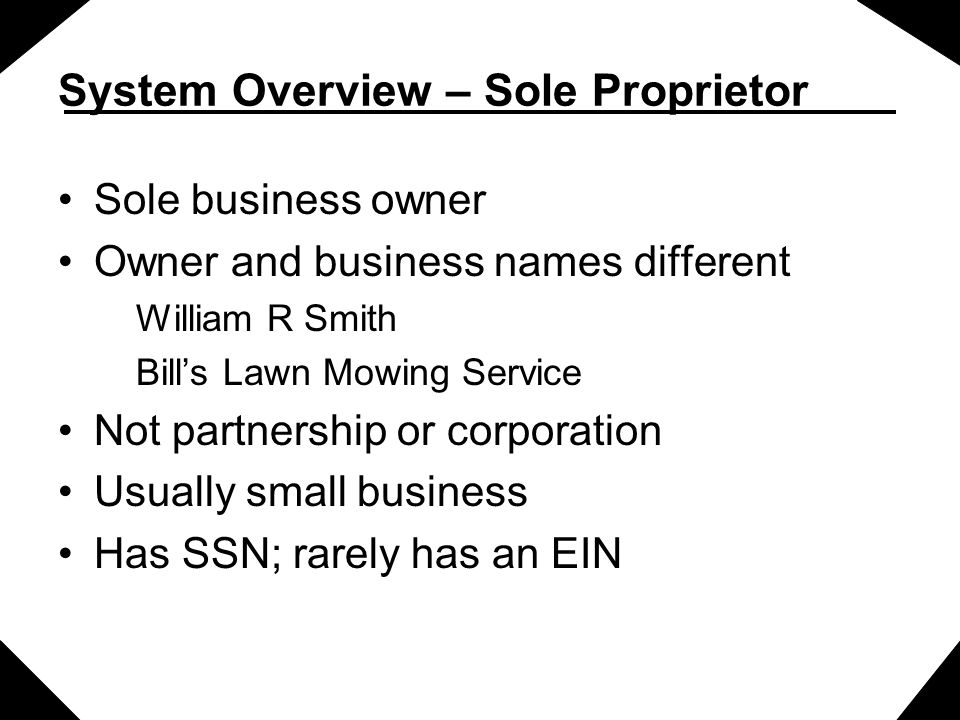 System Overview – Sole Proprietor Sole business owner Owner and business names different William R Smith Bill's Lawn Mowing Service Not partnership or