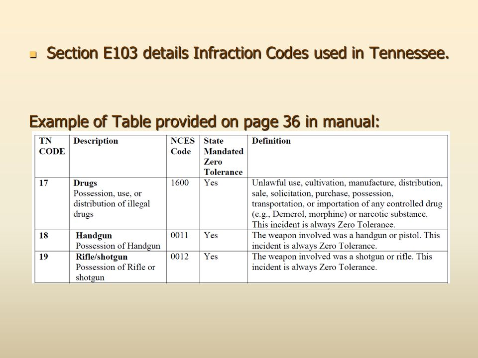Section E103 details Infraction Codes used in Tennessee.