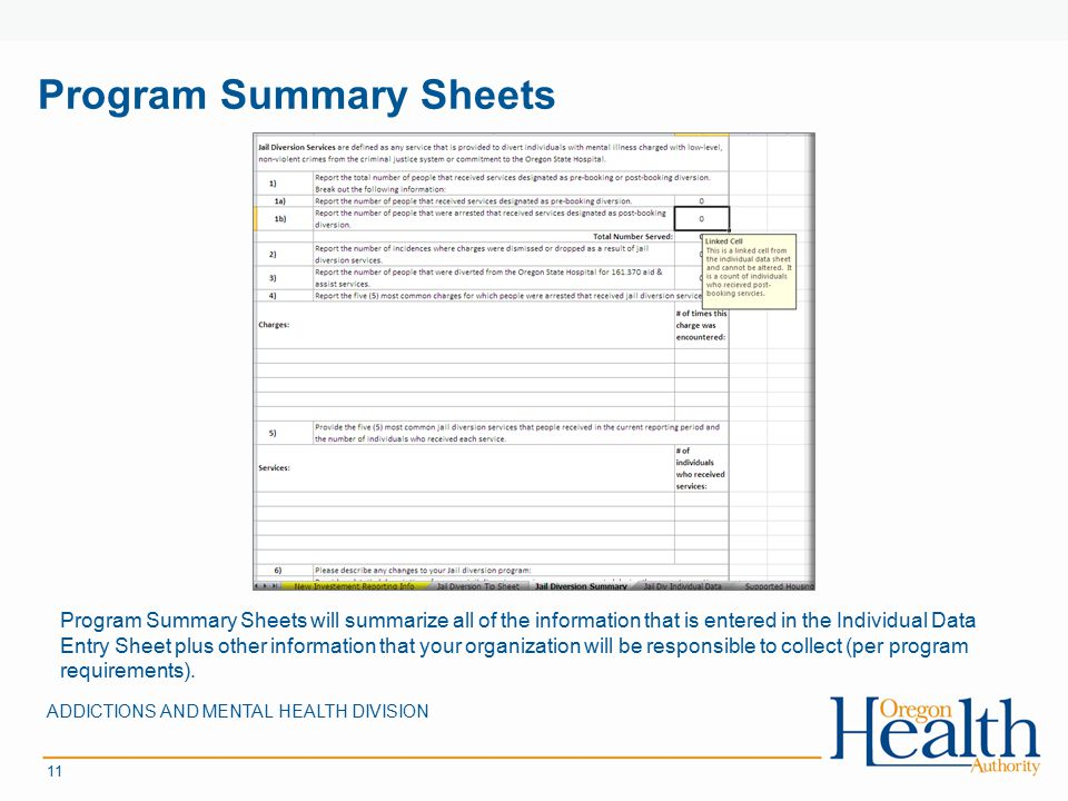 Program Summary Sheets ADDICTIONS AND MENTAL HEALTH DIVISION 11 Program Summary Sheets will summarize all of the information that is entered in the Individual Data Entry Sheet plus other information that your organization will be responsible to collect (per program requirements).