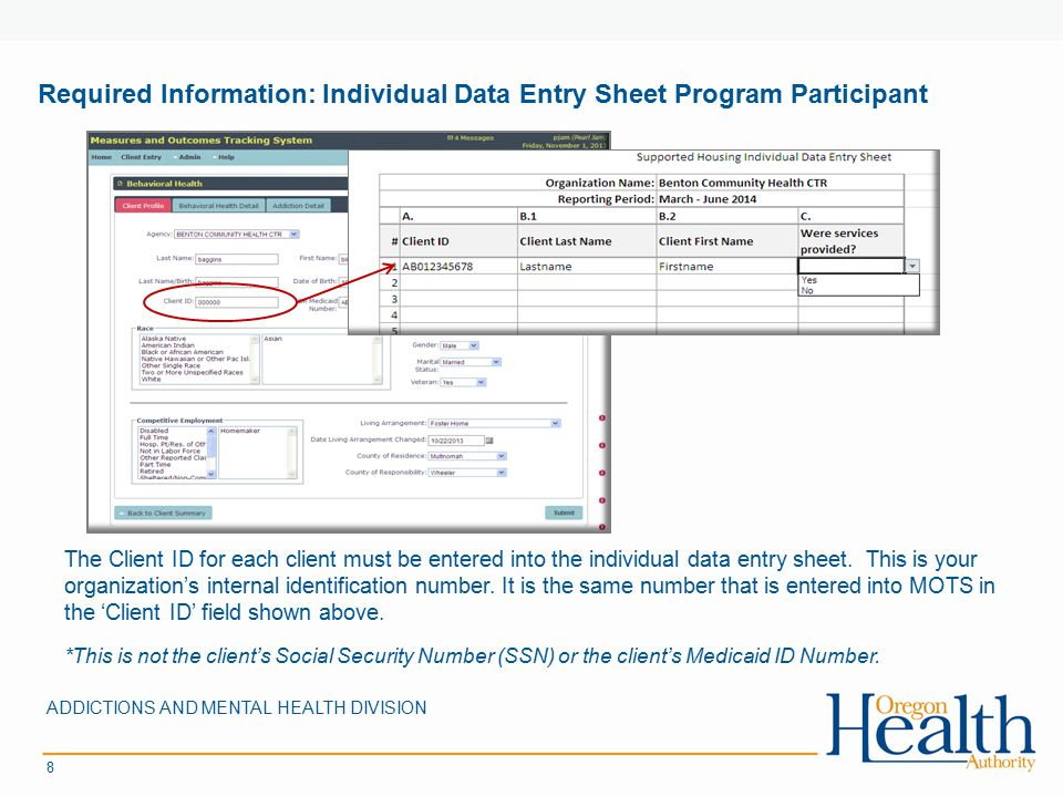 Required Information: Individual Data Entry Sheet Program Participant ADDICTIONS AND MENTAL HEALTH DIVISION 8 The Client ID for each client must be entered into the individual data entry sheet.