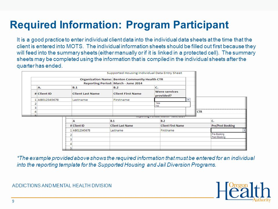 Required Information: Program Participant ADDICTIONS AND MENTAL HEALTH DIVISION 9 *The example provided above shows the required information that must be entered for an individual into the reporting template for the Supported Housing and Jail Diversion Programs.