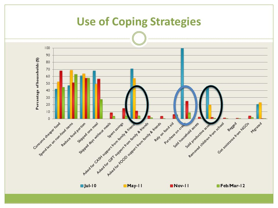 Use of Coping Strategies
