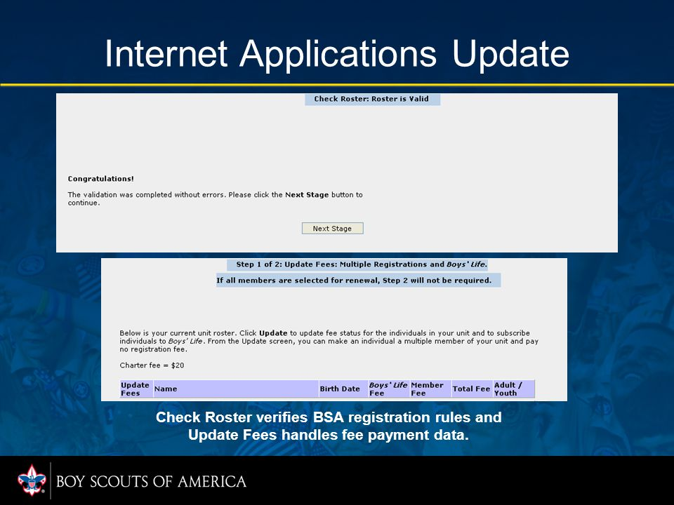 Internet Applications Update Check Roster verifies BSA registration rules and Update Fees handles fee payment data.