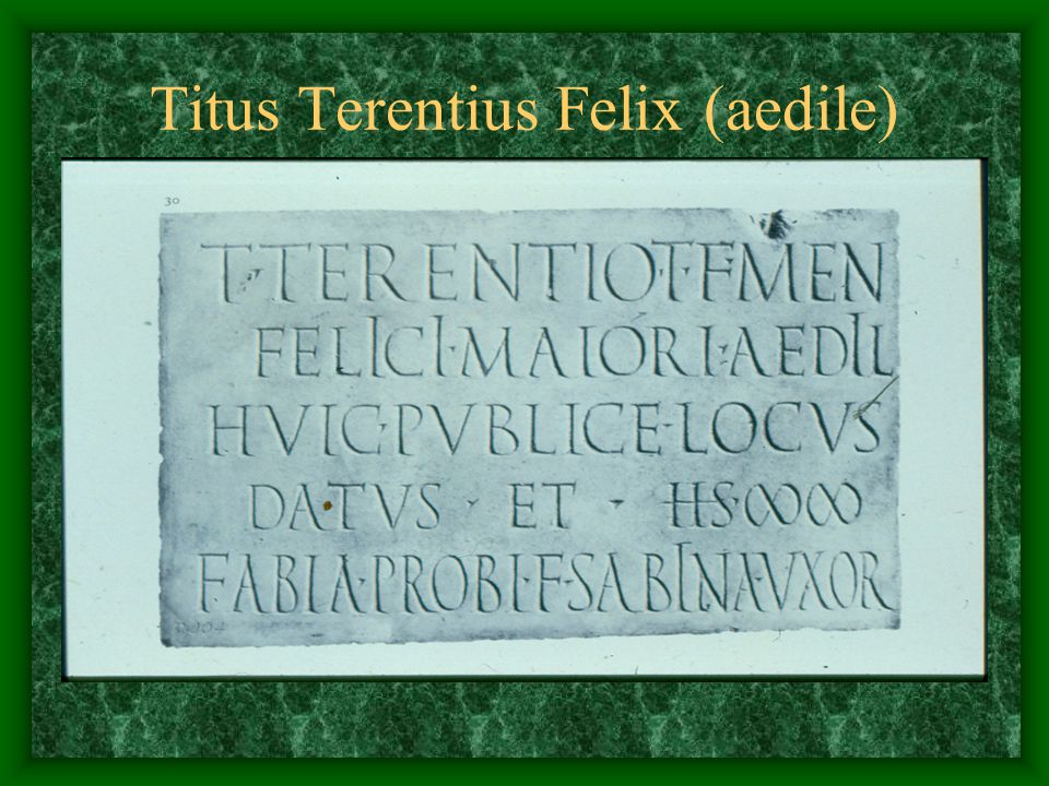 Titus Terentius Felix (aedile)