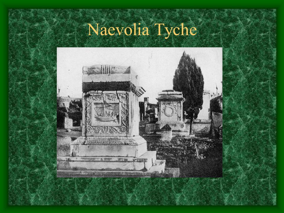 Naevolia Tyche