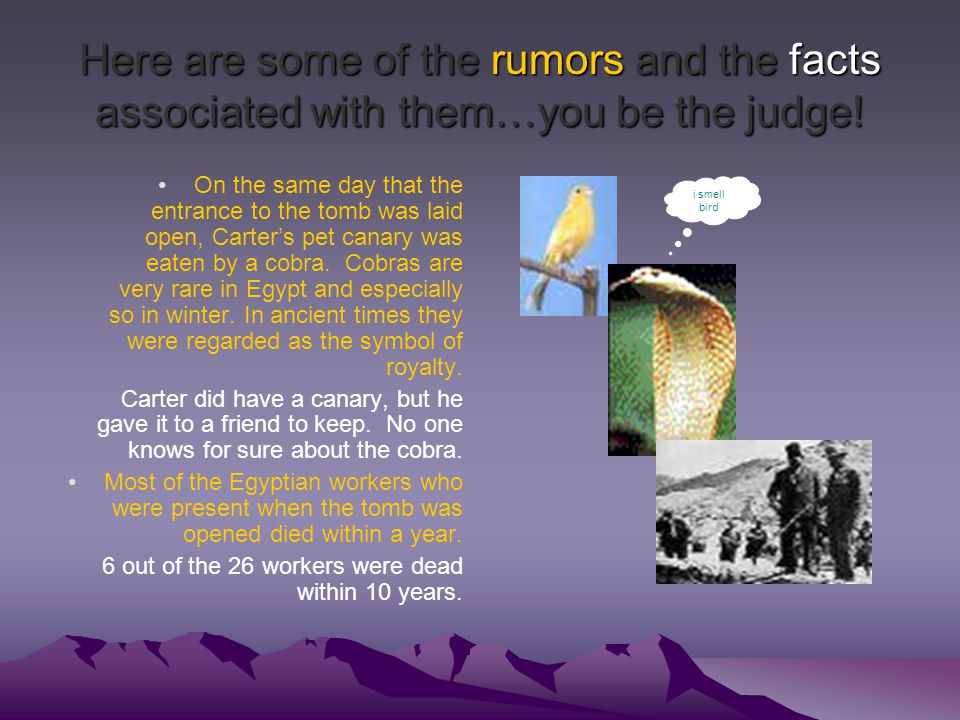 Here are some of the rumors and the facts associated with them…you be the judge.