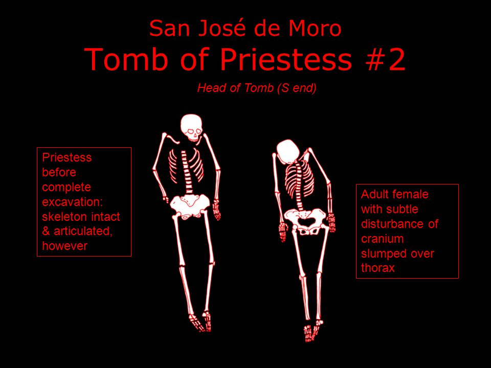 San José de Moro Tomb of Priestess #2 Priestess before complete excavation: skeleton intact & articulated, however Head of Tomb (S end) Adult female w