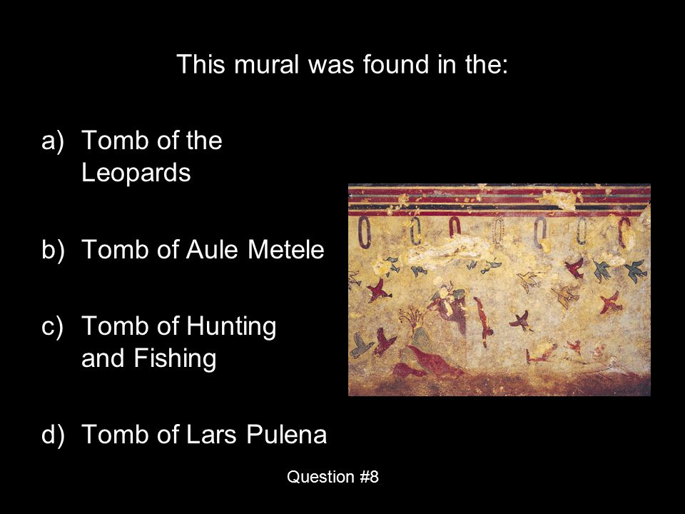 This mural was found in the: a)Tomb of the Leopards b)Tomb of Aule Metele c)Tomb of Hunting and Fishing d)Tomb of Lars Pulena Question #8