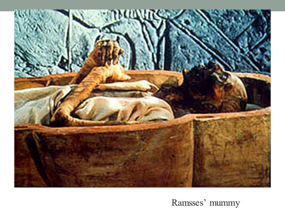 Ramsses' mummy