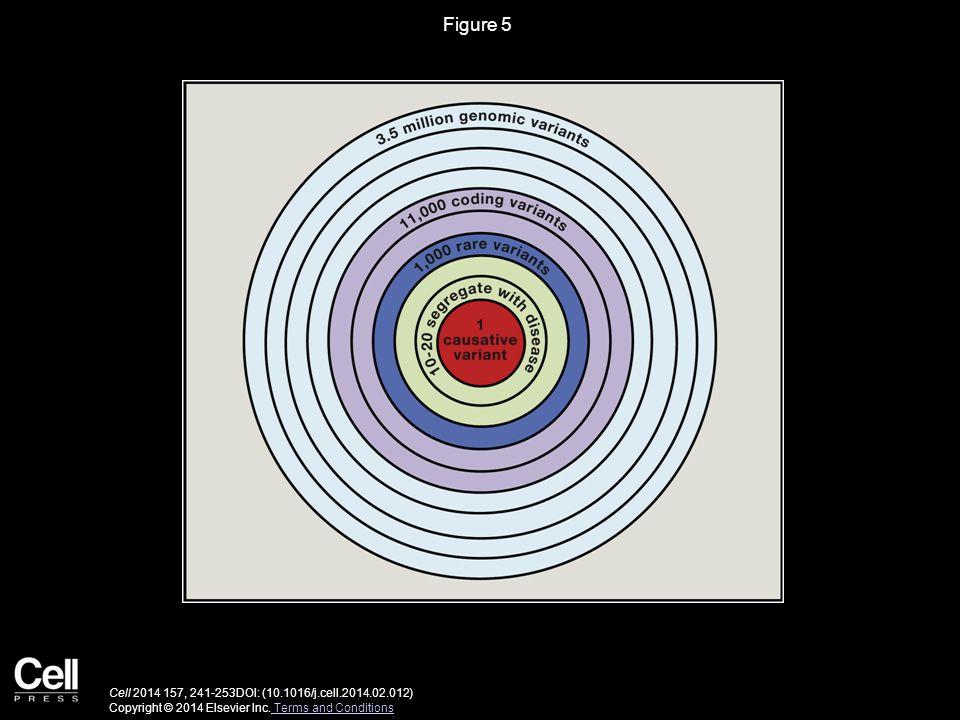 Figure 5 Cell 2014 157, 241-253DOI: (10.1016/j.cell.2014.02.012) Copyright © 2014 Elsevier Inc.