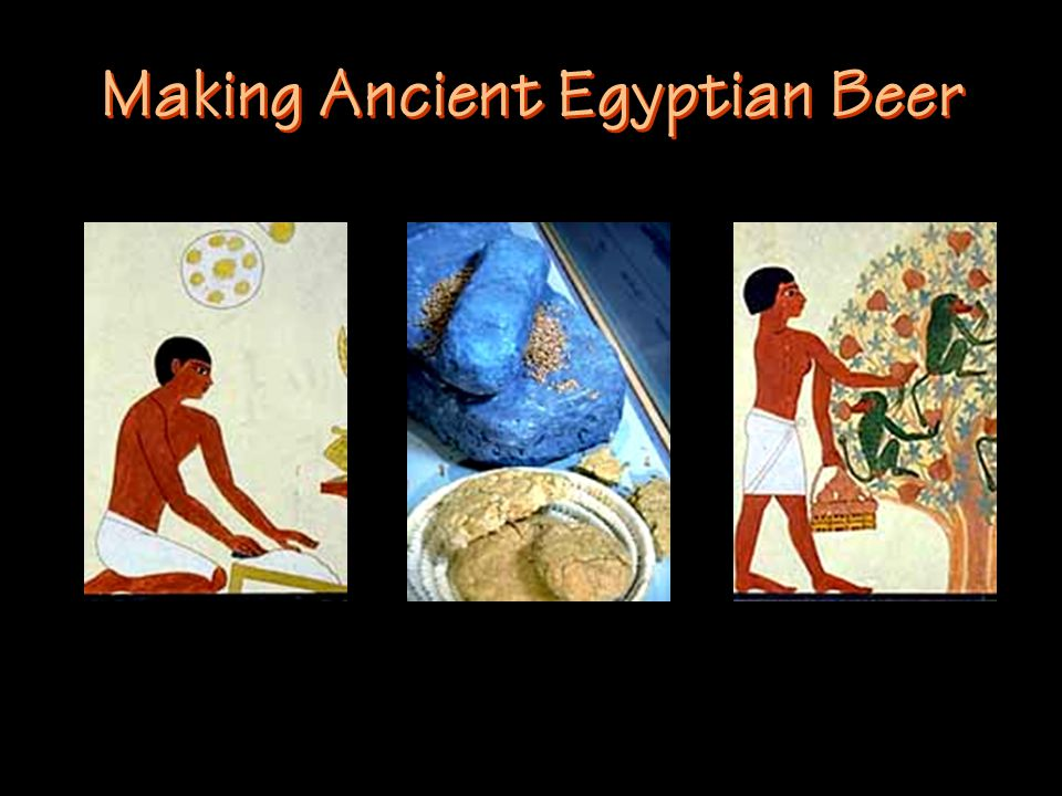 Making Ancient Egyptian Beer