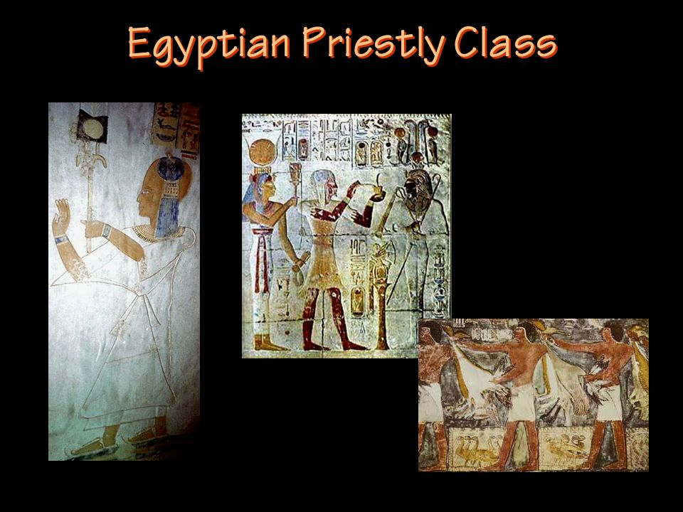 Egyptian Priestly Class