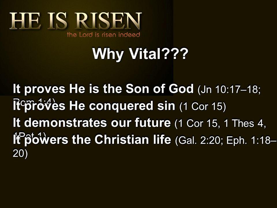 Why Vital .