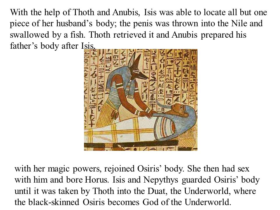 With the help of Thoth and Anubis, Isis was able to locate all but one piece of her husband's body; the penis was thrown into the Nile and swallowed by a fish.